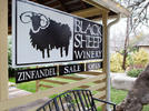Picture for May Your Summer be Special with June Savings from Black Sheep Winery!