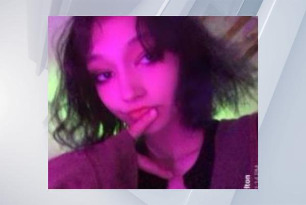 Picture for Missing child alert issued for teen from Hudson Falls