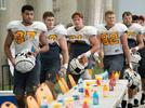 Picture for Tennessee football still has options at TE despite Sean Brown transferring