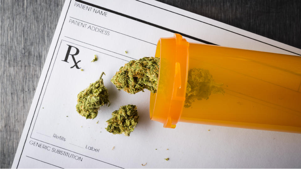 Picture for Will the New Medical Marijuana Licenses Lower Costs for Florida Patients?