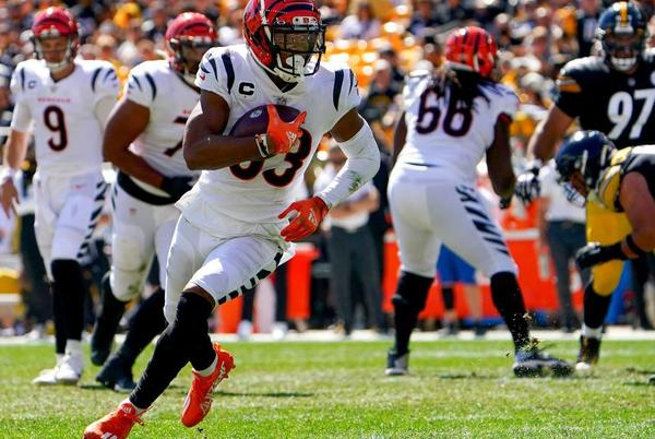 Picture for Bengals vs. Steelers game recap: Everything we know