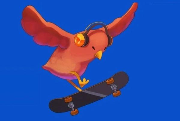 Picture for SkateBIRD review