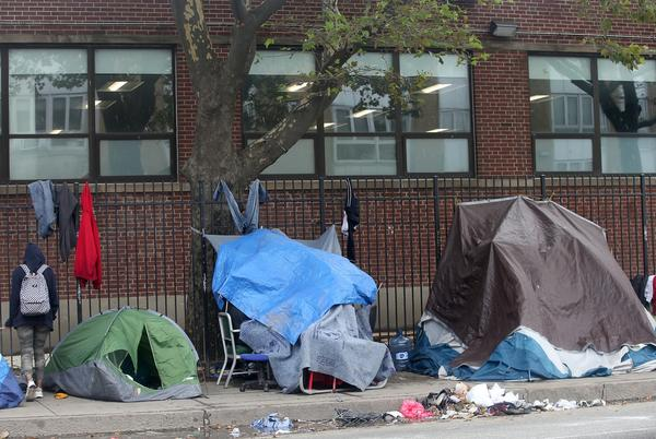 Picture for Rat-borne disease of 'high risk' to homeless identified in Boston