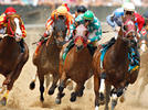 Picture for 2021 Haskell Stakes odds, contenders, lineup: Legendary expert reveals surprising picks, predictions