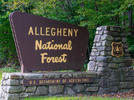 Picture for Forest Service Accepting Public Comments on Reroute of the North Country National Scenic Trail – Amsler Spring