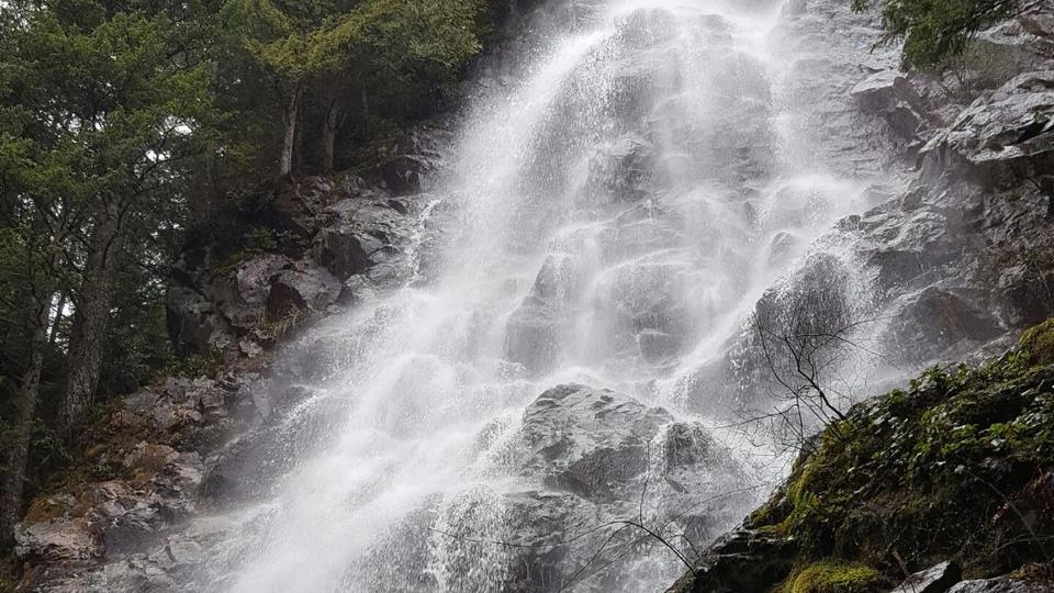 Picture for A wet hike to Tenerife Falls made our hearts happy