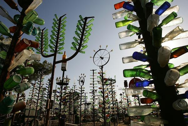 Picture for In Kentucky and Elsewhere, Bottles in Trees Aren't Just for Decoration
