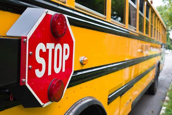 Picture for School bus driver shortage plagues Kingston