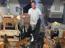 Picture for Hurricane Delta hero shelters more than 300 dogs in his home