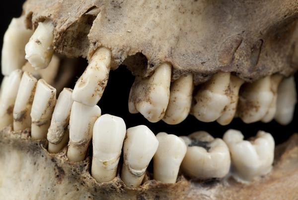 Picture for New Research Dispels Theory That First Americans Came From Japan