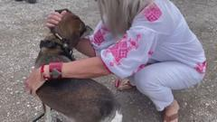 Cover for Oregon Dog Reunites With North Texas Family After Owner Dies