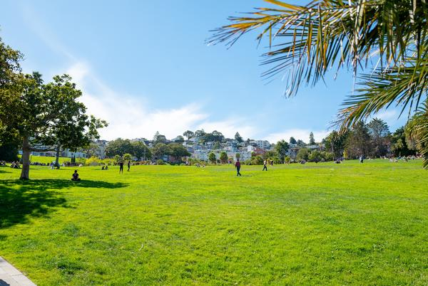 Picture for Weekend Wind-Down: Here Are Some Small Businesses to Shop for a Great Dolores Park Picnic
