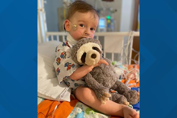 Picture for Cincinnati Zoo names sloth habitat after Indiana toddler who died from rare syndrome