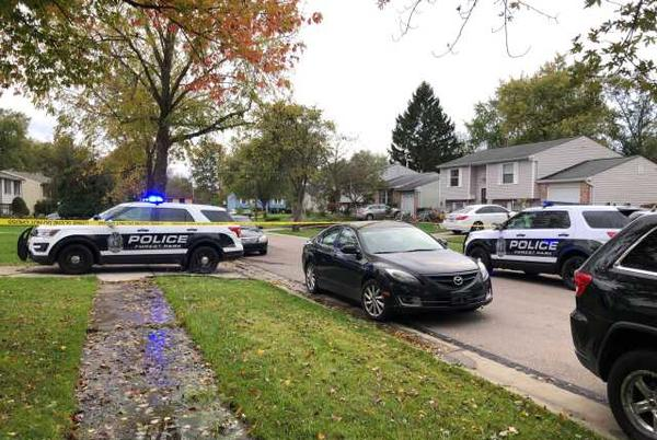 Picture for Police: Woman killed in Forest Park home