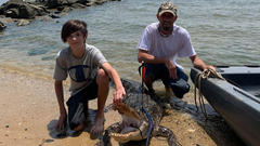 Cover for Maryland man traps, kills alligator spotted near Chesapeake beaches in Calvert County