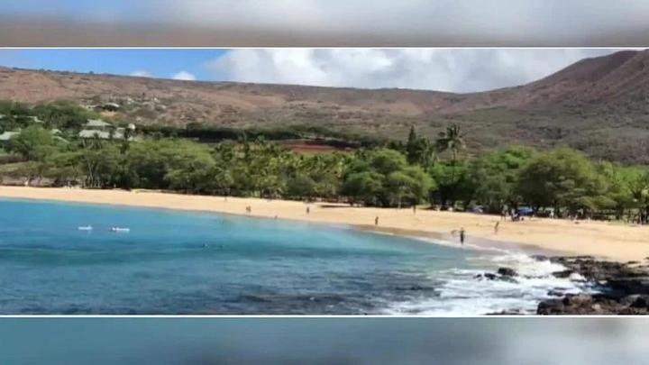 Cover for Proposal to limit number of tourists at Hawaii's only beach park runs into opposition