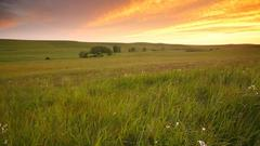 Cover for Flint Hills National Scenic Byway Is The Most Enchanting Scenic Drive In Kansas