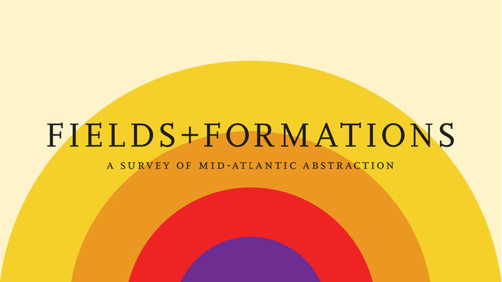 """Cover for Current Exhibition from The Delaware Contemporary and the American University Museum: """"Fields and Formations"""""""