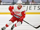 Picture for Red Wings Wrap-Up: Filip Zadina continues taking steps toward greatness