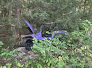 Picture for Driver Will Recover After Crash in Bristol, Police Say