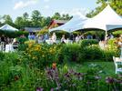 Picture for Hamilton House to host Cocktails in the Garden benefit