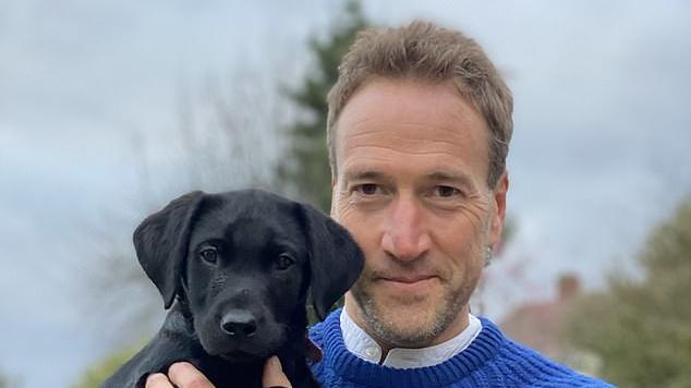 Picture for Yappy little ankle biters make me howl! Labrador lover BEN FOGLE is not surprised small dogs are more aggressive... but chihuahua fan JENNI MURRAY says keep your hands off my pets!