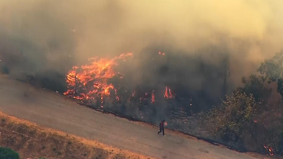 Picture for UPDATE: Brush Fire Burns In North San Jose, Milpitas Along Coyote Creek Area