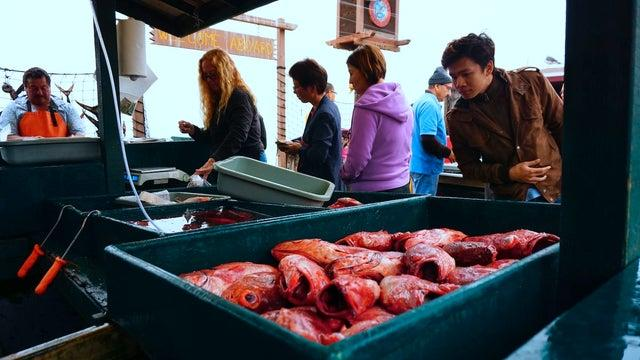 Picture for Safe and ethical seafood on the menu this Congress