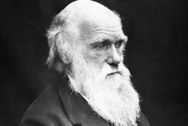 Picture for Charles Darwin's natural selection mystery solved after 160 years in stunning breakthrough