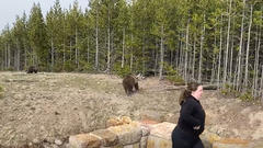 Cover for Illinois Woman Proves She Has No F's To Give By Getting Insanely Close To Wild Bears