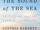 """Picture for Book excerpt: """"Sound of the Sea"""" by Cynthia Barnett"""