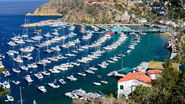 Cover for Catalina Island: Things to do on a day trip.