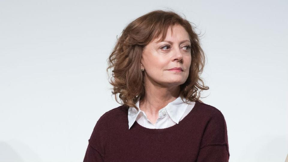 Picture for Susan Sarandon and Marianne Williamson call for justice in Steven Donziger case