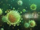 Picture for Lowndes County reports no new virus cases
