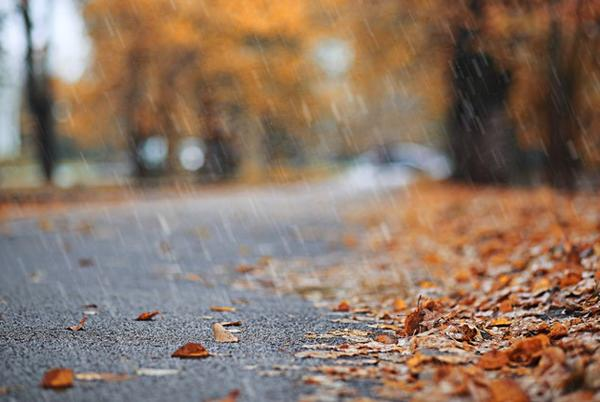 Picture for Heavy rain, mountain snow expected this weekend in western Washington