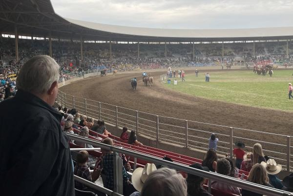 Picture for As rodeo returns to Eastern Oregon, plenty of broncs and bulls. Not so many masks.