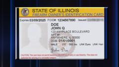 Cover for Illinois FOID card delays: New law will help state clear backlog, IL State Police director says