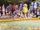 Picture for Rockwall Rubber Duck Regatta set for Sept. 4 in new location