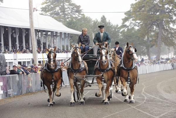 Picture for Fryeburg Fair returning in person Oct. 3-10