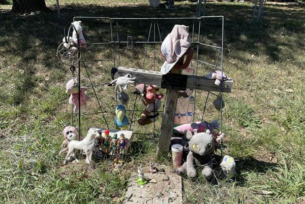 Picture for Friend of boy slain in Wagoner 2013 crash continues seeking justice: 'It could be someone else's child next'