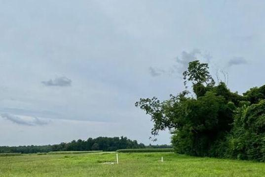 Picture for 1653 Oldhams Rd, Westmoreland, VA 22572