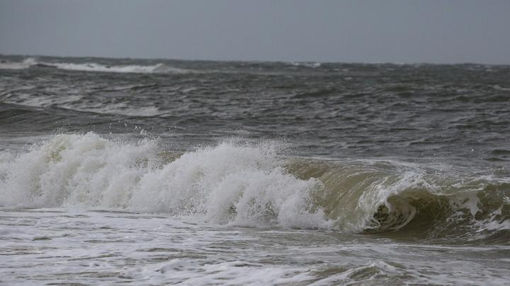 Cover for One dead, dozens rescued from rip currents along Jersey Shore