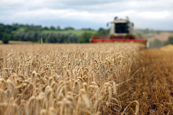 Picture for Iowa Farming Community Harvesting Crops for Late 39-Year-Old Who Died in September