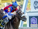 Picture for Swiss Skydiver Faces Deep Field In Saturday's Ogden Phipps
