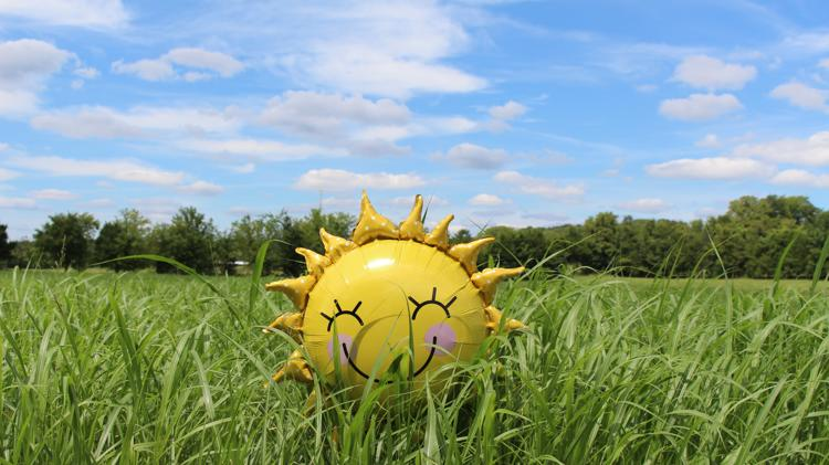 Picture for Daily Weather Forecast For Carrington