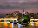 Picture for The Splitting of the Seine