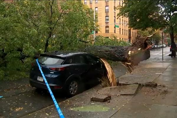 Picture for Tri-state region feeling effects of heavy rain, high winds powerful Nor'easter