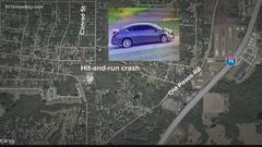 Cover for Woman hit, killed by car while checking mail in Pasco County