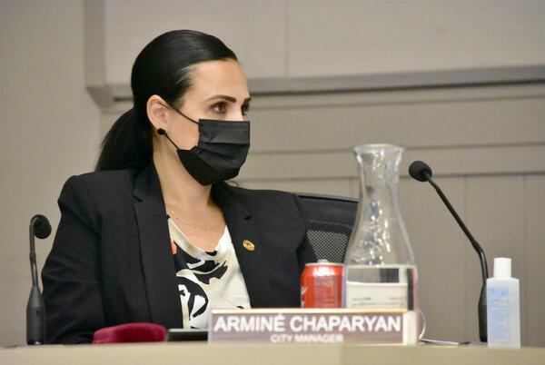 Picture for City Council | Community Advocates Push for Racial Bias Assessment