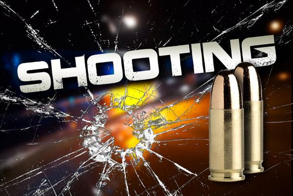 Picture for Vehicle crashes in NW house; two men found shot